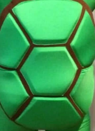 Четыре черепахи